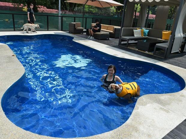 Hotel de luxo para c es tem piscina em forma de osso for Formas de piscinas