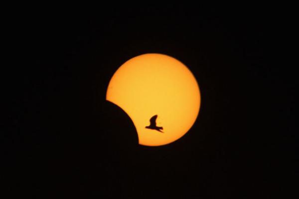 Circuito Oregon : Moradores do norte e nordeste poderão ver eclipse solar hoje