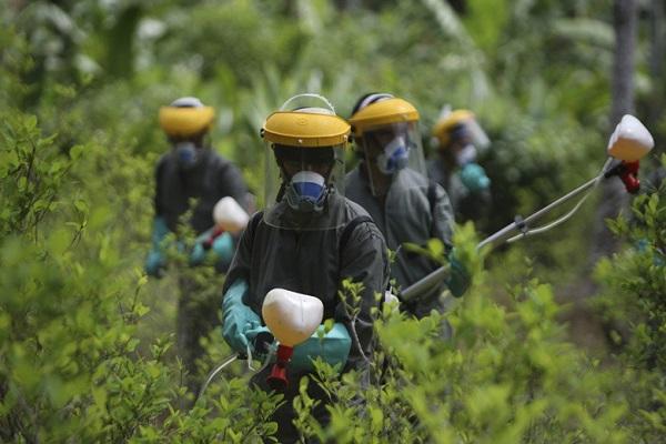 Exposição ao agrotóxico em Mato Grosso é sete vezes superior a média nacional
