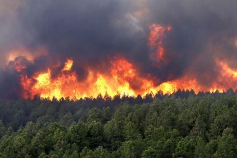 Política e aumento de queimadas reacendem debate sobre ambiente